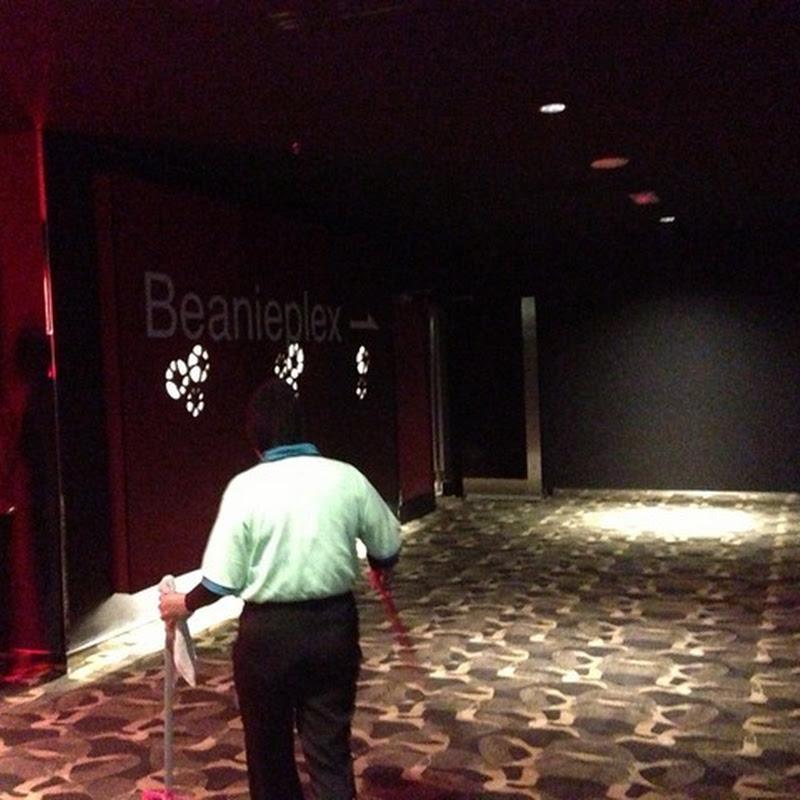 TGV Cinemas–Beanieplex