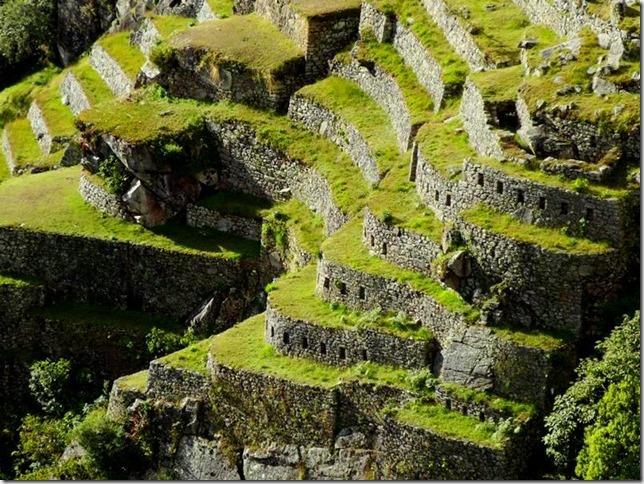 Machu_Picchu_DSC02263