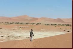 Sossusflei-Dunes-Nov-2011-(42)-for-web