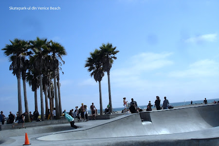 Plaja Venice Beach de langa Los Angeles: