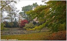 Осень в Яхимове. Чехия.