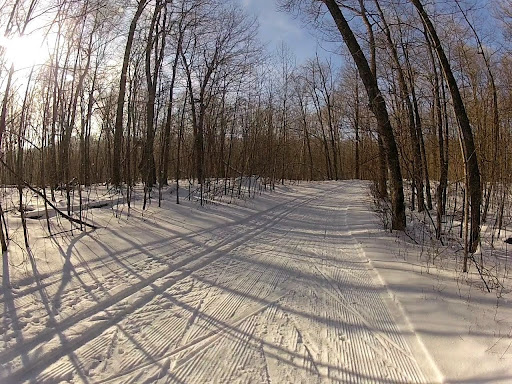 North Loup skate lane lightly combed Thursday morning. Track is holding out well. One of the better classic trails right now. Few bumpy spots on far end but good coverage and a nice ski.