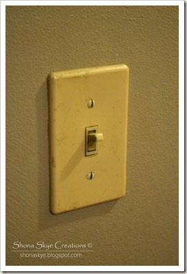 Shona Skye Creations - Bakelite Switch Covers 2013-01-09 005