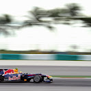 Mark Webber Red Bull RB6