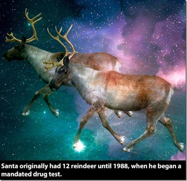 christmas-facts-never-knew-13