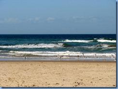 7129 Texas, South Padre Island - Beach access #3