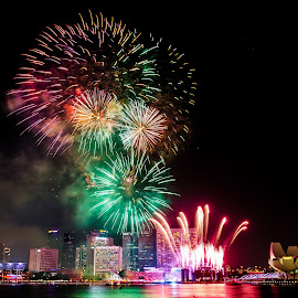 MBS Fireworks 2014 by Desmond Ngan - Abstract Fire & Fireworks