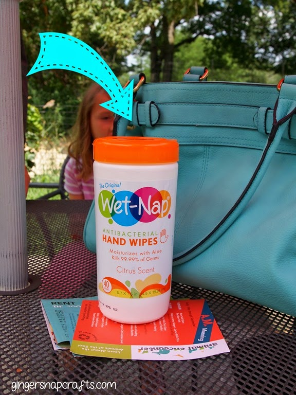 wet nap hand wipes