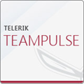 What's new in TeamPulse - Full Project Oversight with the New TeamPulse xView