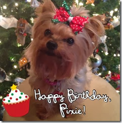 Happy Birthday Pixie