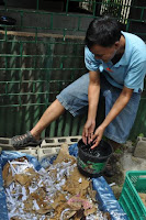 pinoyecofarm vermicomposting seminar _0066.JPG