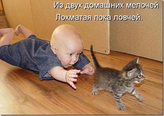 7739c1fa75d0d9577a0e93d79ac_prev