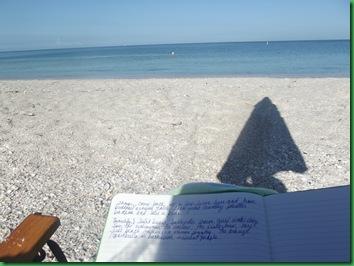 Friday Nokomis Beach (90)