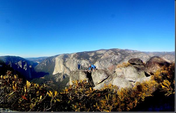 Yosemite Pan 10-1