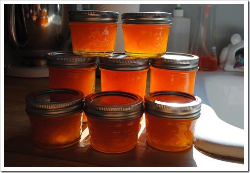 apricot jam 2011-07-17 036