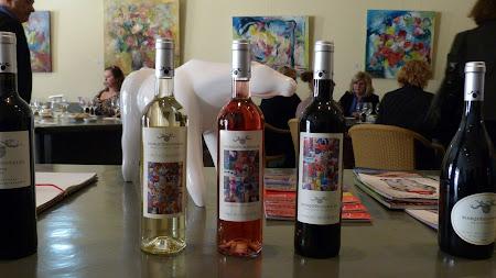Vin de Algarve:  Degustare vinuri Quinta dos Vales