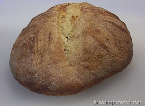 einkorn-levain 022