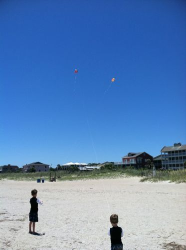 Beach+kite+Ash+Ace