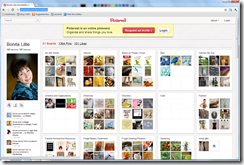 Pinterest Bonita Lillie boards screenshot