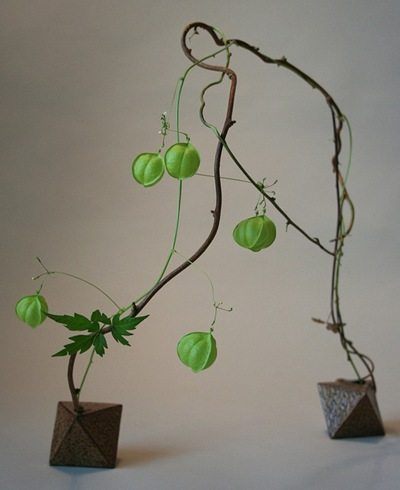 green ikebana arrangement