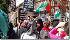 Rob at Reading Gaza Demo