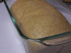 whole-wheat-harvest-bread 013