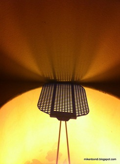 Trumf, the Swedish swatter