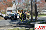 Car Into Pole In Front Of 164 East Eckerson Rd - DSC_0052.JPG