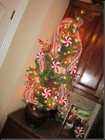 Christmas 2011 178