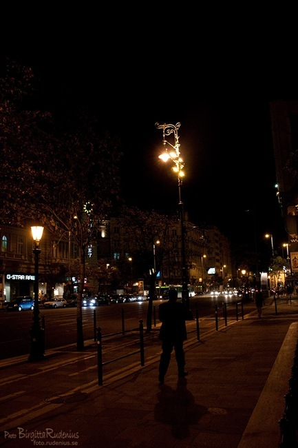 street_20110824_nightwalk