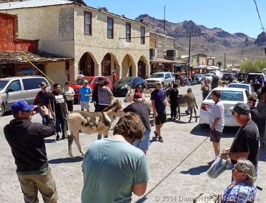 Oatman Street Scene