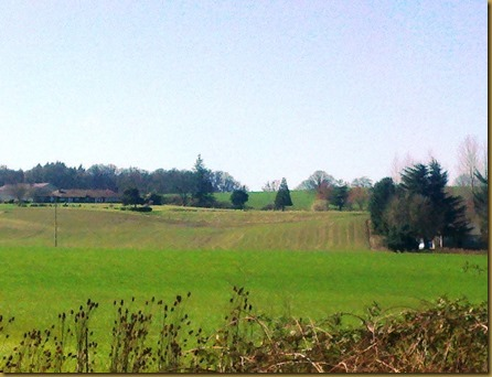 willamette valley green fields