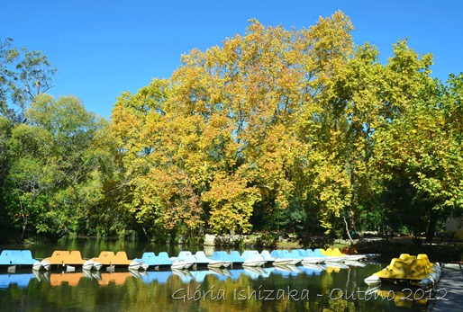 Glória Ishizaka - Folhas de Outono - Portugal 4