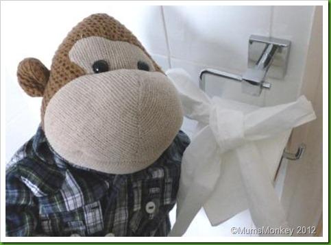 Toilet paper bow