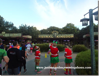 Mickey's Jingle Jungle 5K (25)