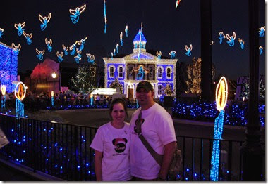 Walt Disney World at Christmas (11)