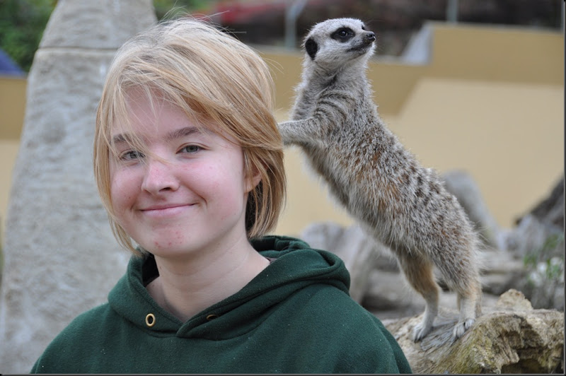 Jess with Meerkat