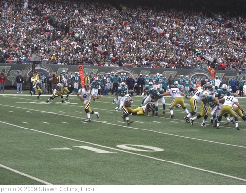 'Dolphins at Jets Nov 1 005' photo (c) 2009, Shawn Collins - license: http://creativecommons.org/licenses/by/2.0/