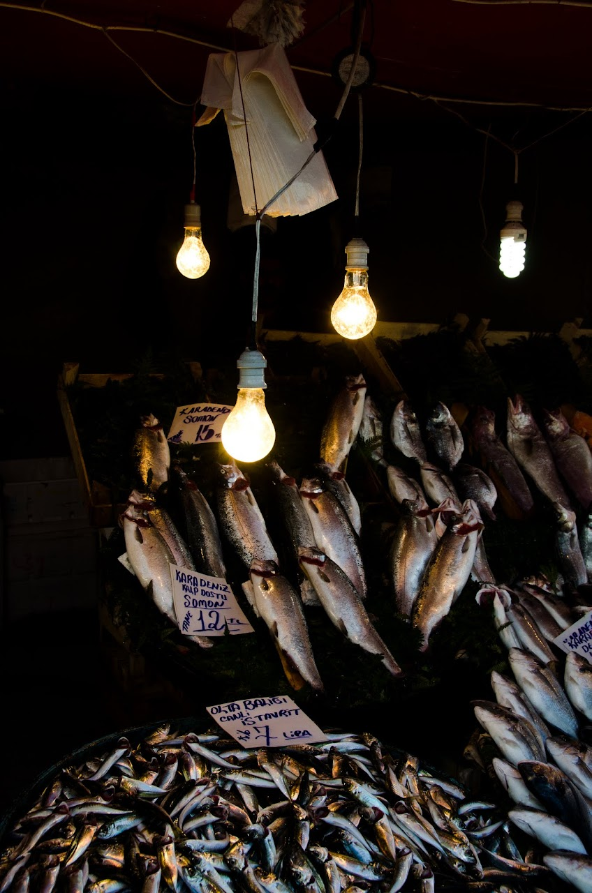 Fish at Galata market