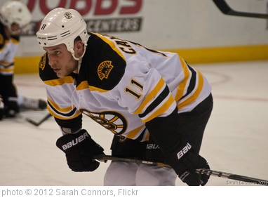 'Blues vs. Bruins-9206.jpg' photo (c) 2012, Sarah Connors - license: http://creativecommons.org/licenses/by/2.0/