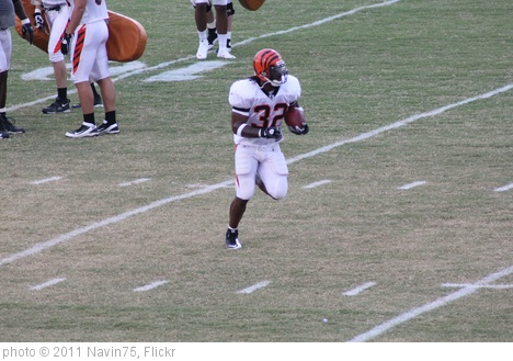 'RB Cedric Benson' photo (c) 2011, Navin75 - license: http://creativecommons.org/licenses/by-sa/2.0/