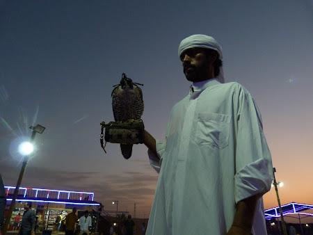 Dubai Desert Safari: baiatul cu soimul