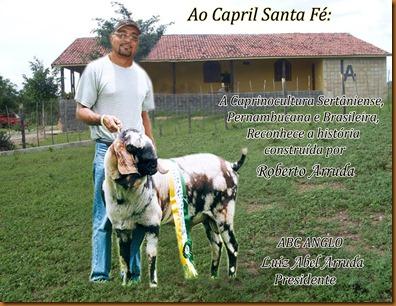 Roberto na Fazenda copia copia