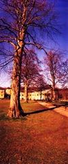 Riseholme-Campus-6---XPRO