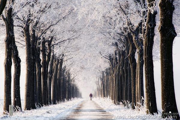 paisagens-de-inverno-winter-landscapes-desbaratinando (20)