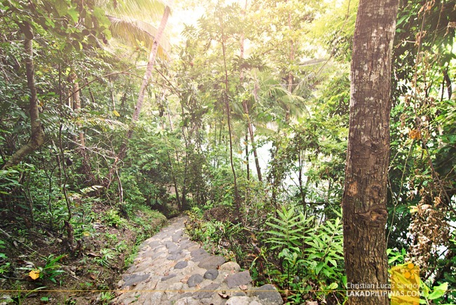Down Stone Steps Towards Siquijor's Cambugahay Falls