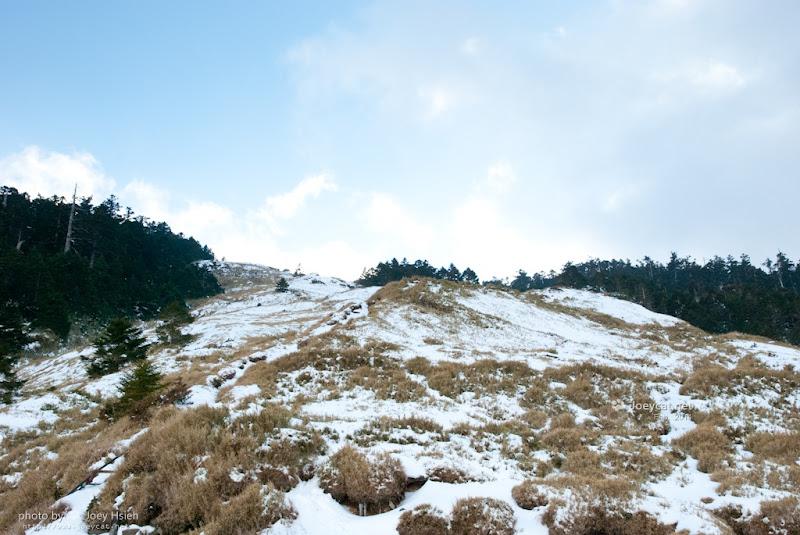 合歡山 武嶺 雪