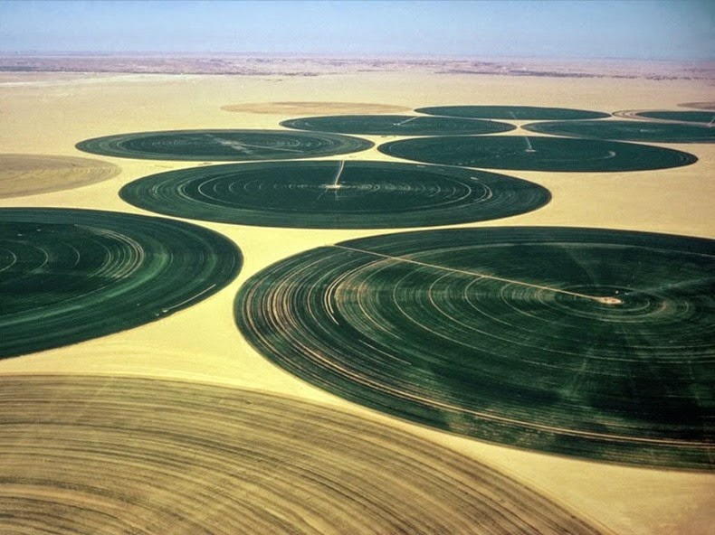 wadi-rum-farming-5