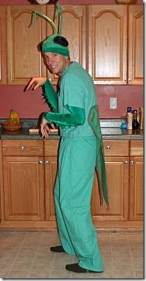 mantis religiosa disfrazcasero (2)