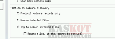 Try to repair infected files